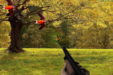Screenshot Bird Shooting: 3D